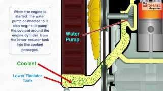 getlinkyoutube.com-How Car Cooling System Works
