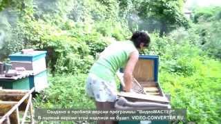 getlinkyoutube.com-Моя Любимая Жена.(Лето 2013г,весна 2014г.)