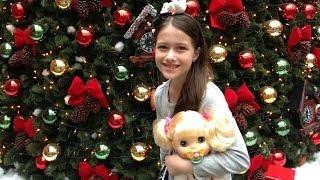 getlinkyoutube.com-Passeando com a Katie por Julia