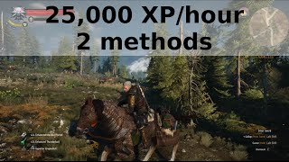 getlinkyoutube.com-Witcher 3 - 25,000 XP per hour - 2 methods