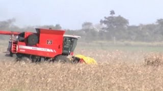 Argentina awaits ruling on crop pesticides view on youtube.com tube online.