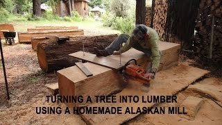 getlinkyoutube.com-Turning a tree into lumber using a homemade Alaskan Mill