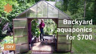 getlinkyoutube.com-Backyard aquaponics: DIY system to farm fish with vegetables