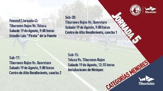 Los Tiburones Rojos listo para el partido contra Querétaro - Diario Tiburón 19 de Agosto