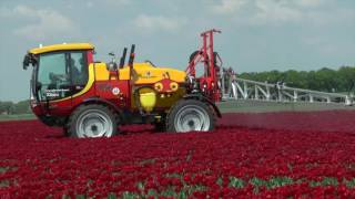 Kellands AgriBuggy works the Tulip fields of Holland
