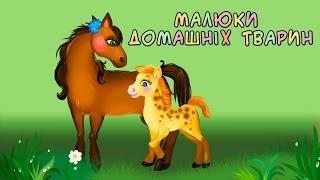 getlinkyoutube.com-Малюки домашніх тварин | Кумедні хвостики