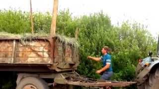 getlinkyoutube.com-Заготовка сена (Украина 2013)