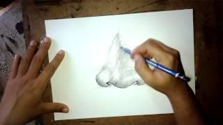 getlinkyoutube.com-ศิลปะการวาดรูปจมูก Drawing nose with stripes