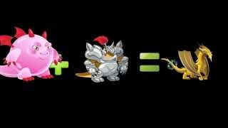 getlinkyoutube.com-Dragon city how to breed four elemental dragons