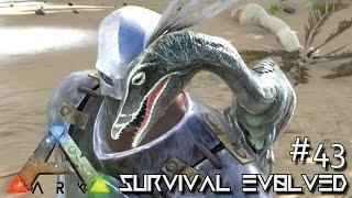 getlinkyoutube.com-ARK: Survival Evolved - COMPSOGNATHUS NEW DINO COMPY!!! [Ep 43] (Server Gameplay)