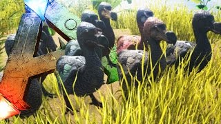 getlinkyoutube.com-THE RISE OF THE DODO ARMY! - ARK Survival Evolved (Funny Moments)