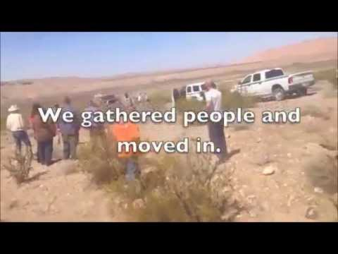 Feds Killing Cattle With Contract Rustlers Cliven Bundy Clar