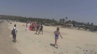 Foreigners enjoyed Holi in Goa Beach