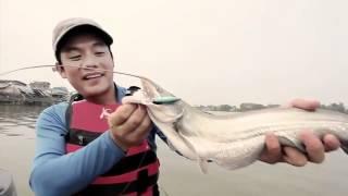 getlinkyoutube.com-ตกปลาเค้าแม่น้ำเจ้าพระยา Wallago attu
