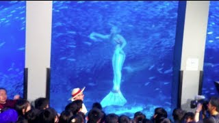 getlinkyoutube.com-Real Mermaid Footage in Japan Aquarium Live TV