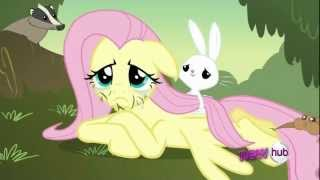 getlinkyoutube.com-Fluttershy and her animals Scene