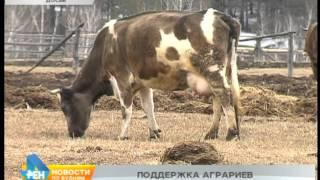 Больше 200 миллионов рублей выделено аграриям региона