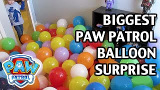 "getlinkyoutube.com-BIGGEST PAW PATROL Balloon SURPRISE Ever! with Paw Patrol Toys & Surprise Toys ""a Paw Patrol Parody"""