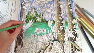 getlinkyoutube.com-Magical Jungle: Tropical Paradise - Part 1 | Adult Coloring Book by Johanna Basford