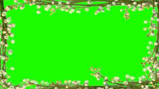 getlinkyoutube.com-beautiful photo border in green screen free stock footage