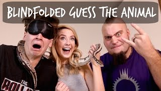 getlinkyoutube.com-BLINDFOLDED GUESS THE ANIMAL
