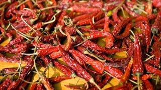 getlinkyoutube.com-Top 9 Hottest Pepper In The World