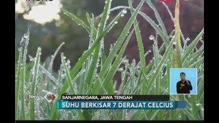 Fenomena Unik, Salju Turun di Dataran Tinggi Dieng - iNews Siang 07/07 width=