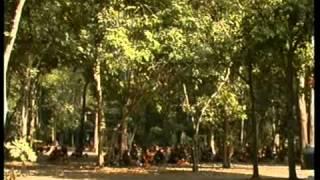 getlinkyoutube.com-ประวัติวัดหนองป่าพง