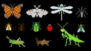Insects - Animals Series - Bugs - The Kids' Picture Show (Fun & Educational Learning Video)