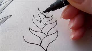 getlinkyoutube.com-How to draw tanglepattern Dooleedo