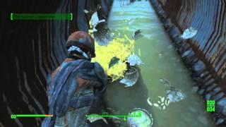 getlinkyoutube.com-Fallout 4 Секреты - Где найти легендарный дробовик - Взрывной Боевой Дробовик.