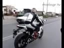 motogr.tv HONDA CBR 1000 2008