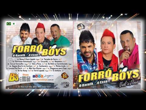 Forró Boys Vol. 5 - 10 Cachaceiro 2014
