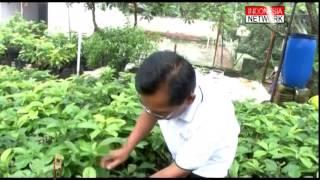 getlinkyoutube.com-Pelangi Inspirasi - Alpukat Mentega & Kebun Sayur Ep 25 Full 3 Segment