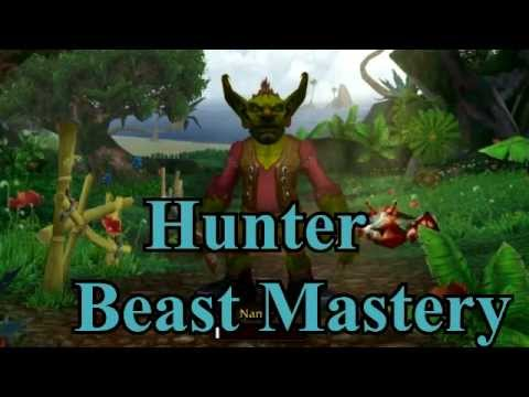 Tempus: Hunter Beast Mastery Gem Guide 4.3