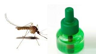 getlinkyoutube.com-Repelentes caseros contra mosquitos, evita el ZIKA la chicunguya y el dengue