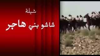 getlinkyoutube.com-شيلة شاشو بني هاجر كلمات صالح الهاجري اداء ماجد الهاجري