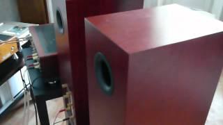 getlinkyoutube.com-Audiovector.mov