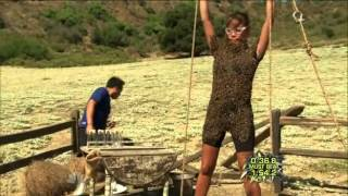 getlinkyoutube.com-Fear Factor Season 7 Episode 6 - The Bee's Are So Angry