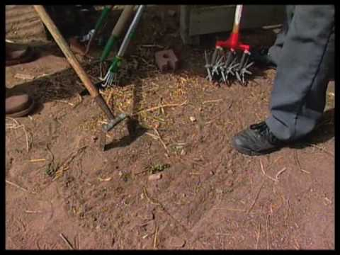 How To Pick The Right Tool For Weeding The Garden