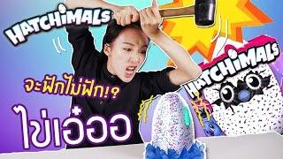 getlinkyoutube.com-ซอฟรีวิว ของเล่นไข่เอ๋อ ฟักได้!?【Hatchimals Woomo Owlicorn】
