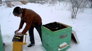 getlinkyoutube.com-Канди для пчел. Приготовление канди. Подкормка пчел