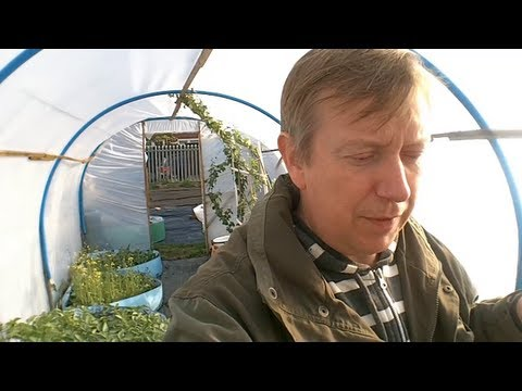 Rick's Allotment (ep 67)