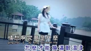 君无愁 - 刘燕华