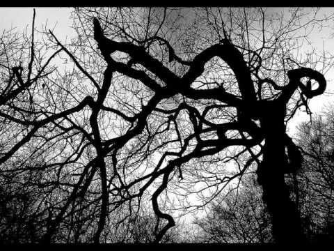 Angry Tree de Life Of Agony Letra y Video