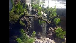 getlinkyoutube.com-aquascape  two sandfall