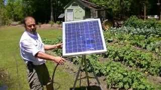 getlinkyoutube.com-Portable solar water pump/ no battery water garden, live off the land.