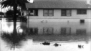 Cars, people and houses drown in water in Watsonville, California. HD Stock Footage