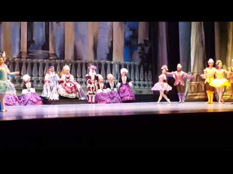 Sleeping beauty 2013
