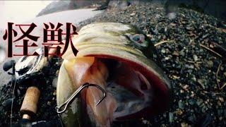 getlinkyoutube.com-真冬の琵琶湖で怪獣バス釣りました【巻物族】